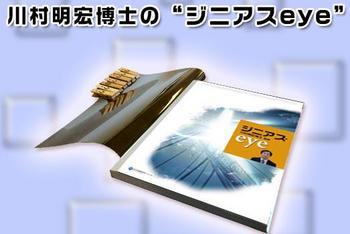 2002_kawamura_eye.JPG